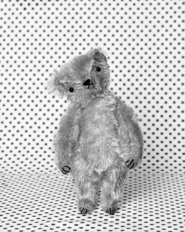 Image of MAXWELL THE LITTLE BEAR