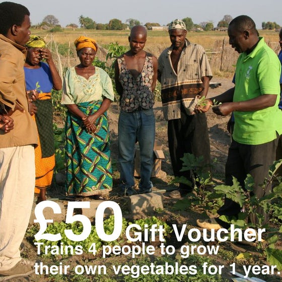 Image of £50 Give-a-Gift Card & Voucher: Trains 4 people to grow their own vegetables on a 1 year course