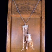 Image of Feather & Fringe Necklace