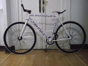 Image of KMZxCRIME BIKES Panthera Purple/Dark