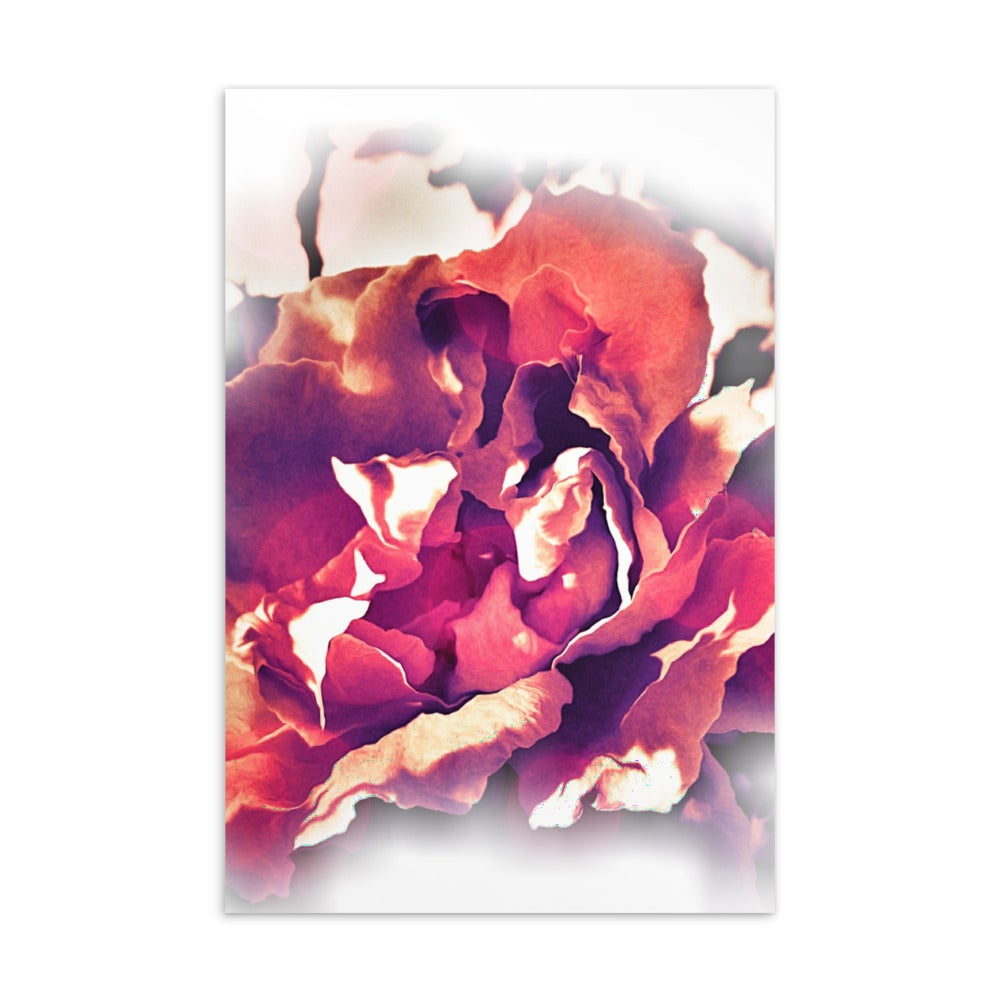 "Image of ""Curled Edges Rose"" - Standard Postcard"