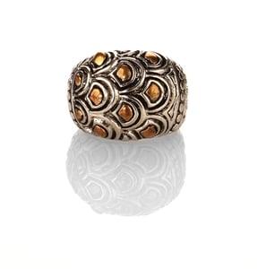 Image of David's Glory ring