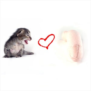 Image of Pussy Loves Prick
