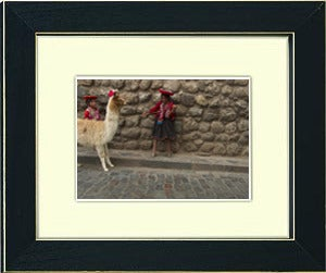 Image of framed print of original photograph - girl with llama