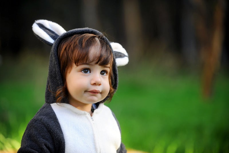 Image of Raccoon Costume   תחפושת דביבון