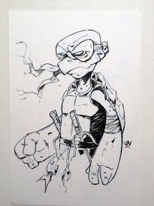 Image of Ninja Turtle, Raphael