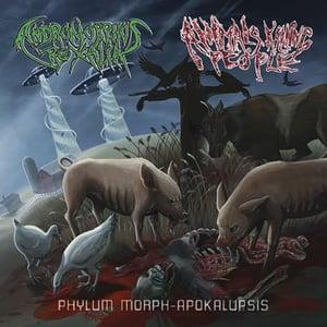"Image of ANIMALS KILLING PEOPLE (USA) / ANDROMORPHUS REXALIA (USA) Split CD ""Phylum Morph-Apokalupsis"""