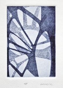 Image of Palm