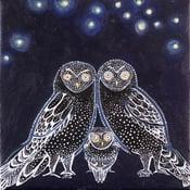 Image of 'Owl Love'