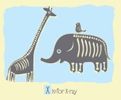 Image of X is for X-ray Alphabet Nursery Print
