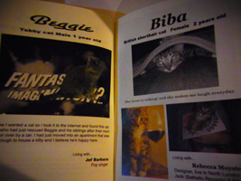 Image of [JAPAN CHARTY] FINALLY OVER THE EDGE 311 CHARITY ZINE