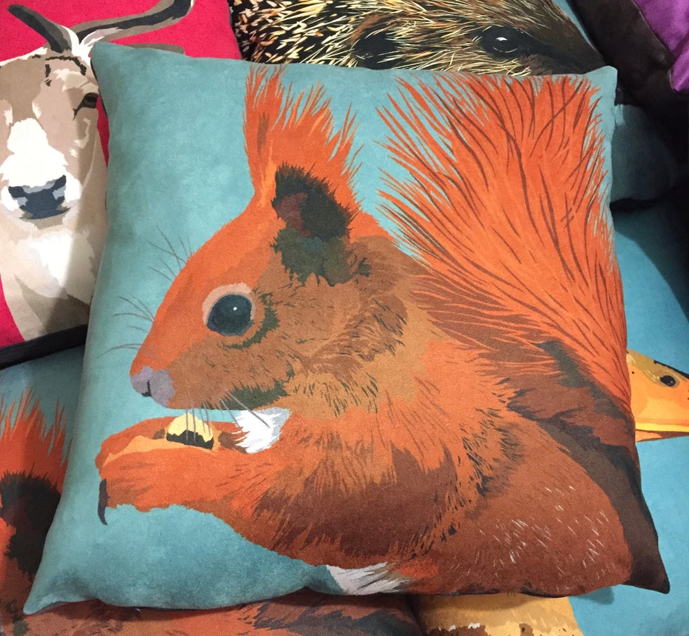 Image of Red Squirrel Cushion