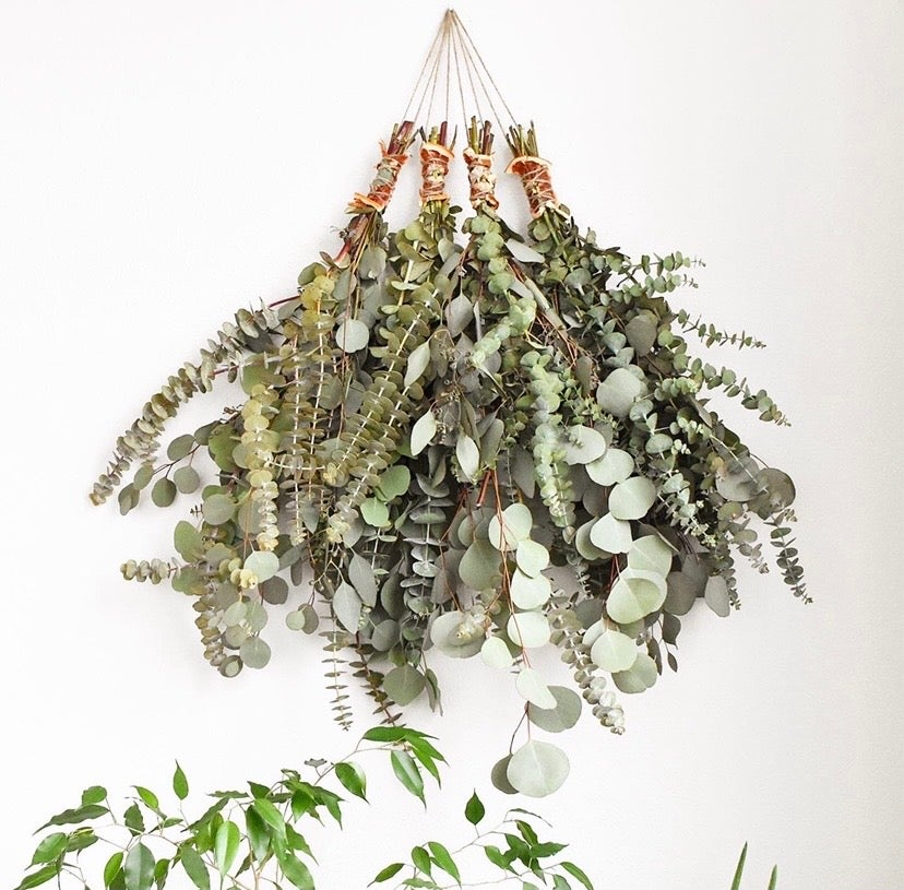 Image of Eucalyptus & Grapefruit Shower Bundle *NO SHIPPING. LOCAL DELIVERY ONLY*