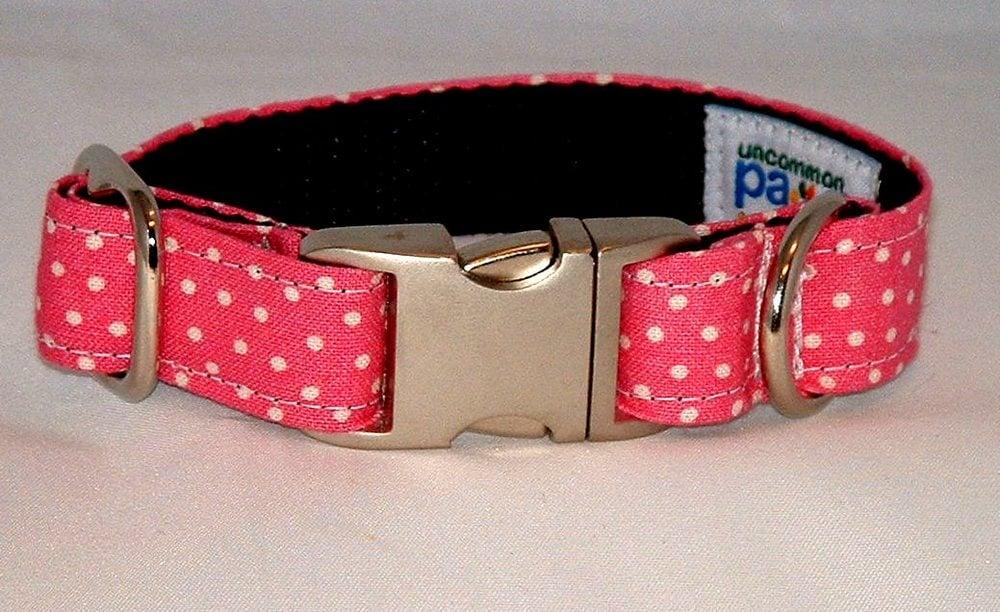 Dot It Is Dog Collar