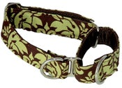Image of Green Damask Martingale Collar on UncommonPaws.com