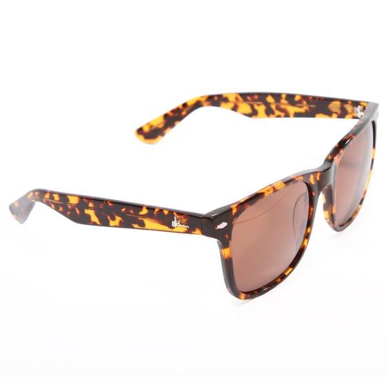 Image of Autumn 2012 Cali Sunglasses
