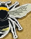 Southern Cuckoo Bee - #4 - Norfolk Wildlife Series - SB Photography
