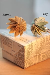 Image of Book Limpet Rings