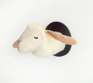 Image of two little sheep