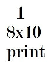 Image of 1 8x10 Print