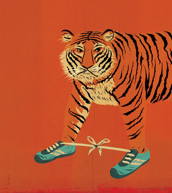 Image of Tiger Feet