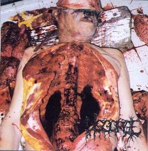 "Image of DISGORGE ""Chronic Corporea Infest"""