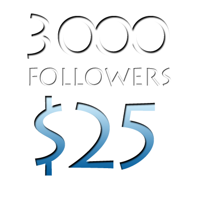 Image of 3000 Worldwide Twitter Followers