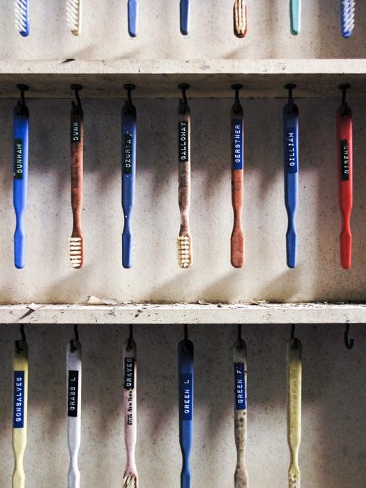 Image of Hudson River Toothbrush