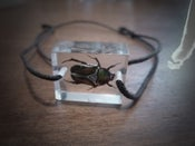 Image of Friendship bracelet featuring 'Anna the beetle' (Anomala)