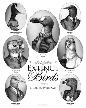 Image of Extinct Birds Poster