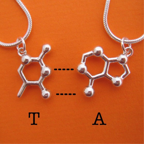 Image of DNA/RNA friendship necklaces
