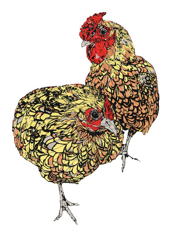 Image of Hen & Cockerel screen print