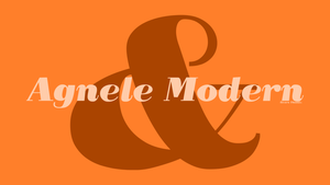 Image of Agnele Modern - TYPEFACE