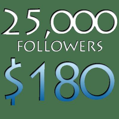 Image of 25,000 Worldwide Twitter Followers