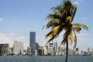 Image of Miami :: July 28, 2012