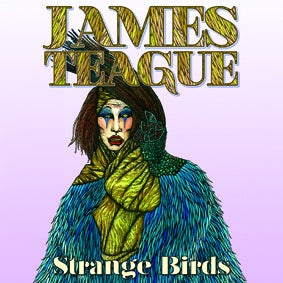"Image of James Teague - Strange Birds/Hollow 7"" (FYI010)"