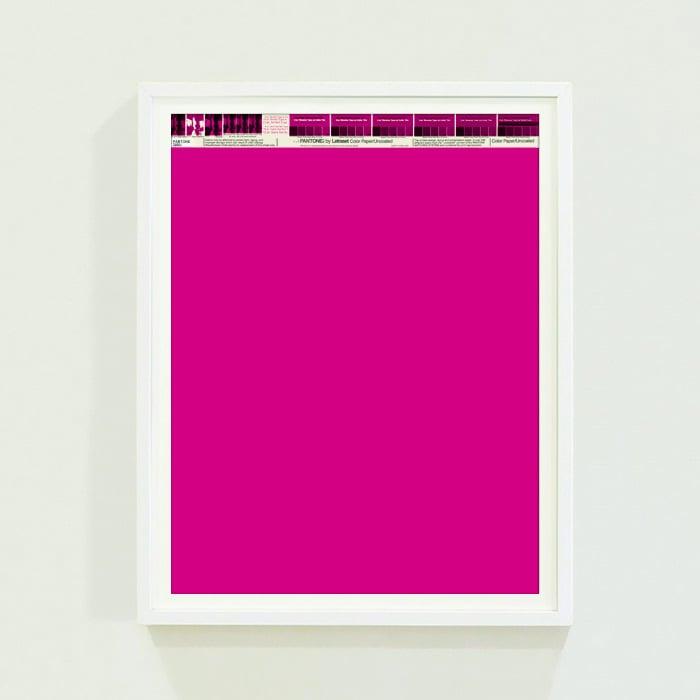 PANTONE® Letraset Posters × Fuchsias