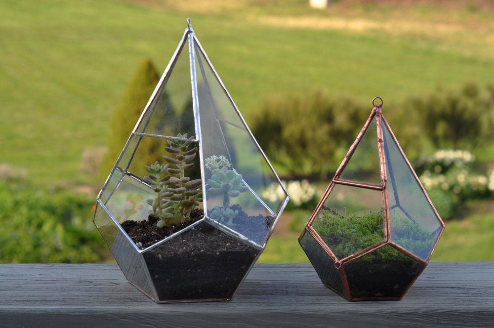 Image of Teardrop Terrarium Kit, medium