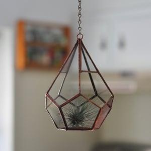 Image of Teardrop Terrarium Kit, small