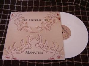 """Image of MANAFOG - Manatees / The Freezing Fog - Split 12"""""""