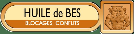 Image of Chrysopea Huile de Bes