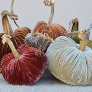 Image of Velvet Plush Pumpkin LoveFeast Large Set