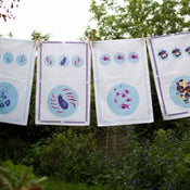 Image of Tea Towels, set of four assorted designs £12 each or set of four for