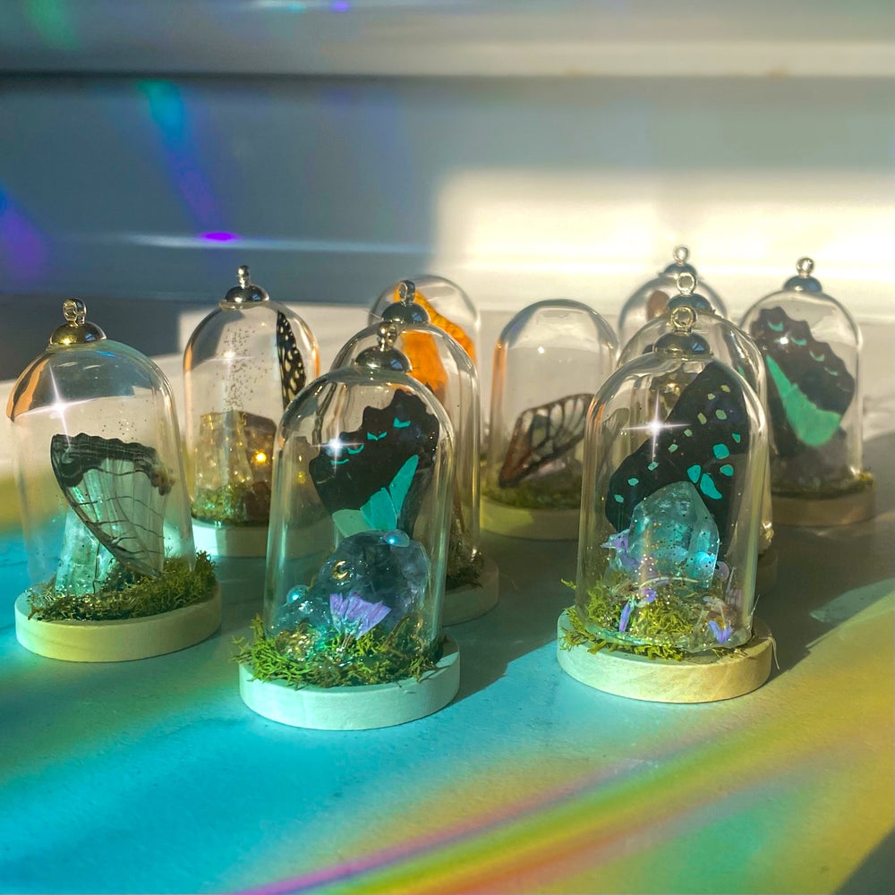 Image of Butterfly Terrarium Good Luck Charms   For car, jewelry, desk, etc.