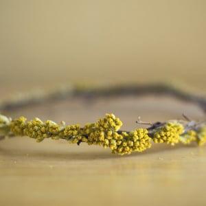 Image of Yellow Yarrow Crown