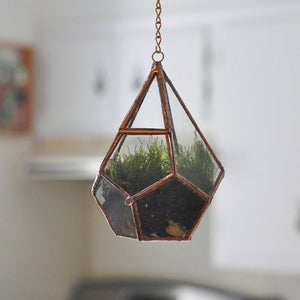Image of Teardrop Terrarium Kit, small hinged