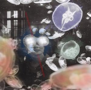 Image of [bleu] - clara altantsegtseg