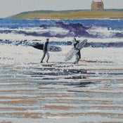 Image of Fistral beach, Newquay, Cornwall - Sea breeze blowin'