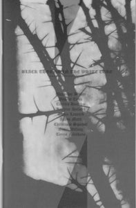Image of Black Thorns in the White Cube exhibition catalogue