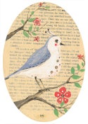Image of Birdie 101